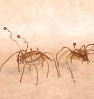t.käfer_1